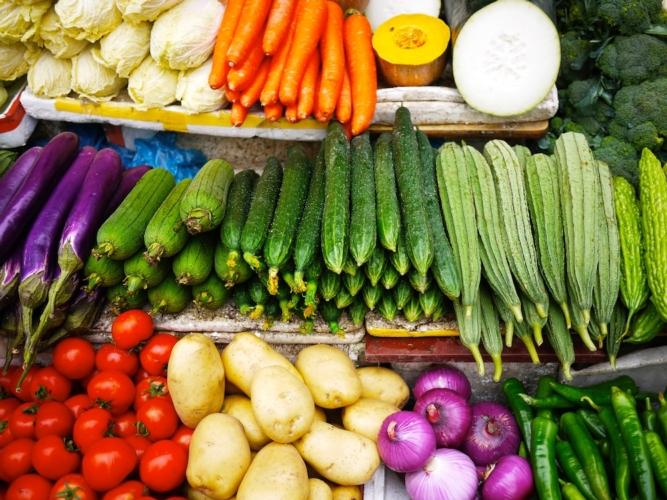 La nostra guida alle celle frigorifere per verdura